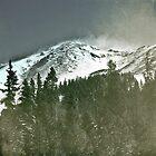 snowblow by Chris Harlan