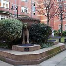 Talbot Head Fountain. by JacquiK