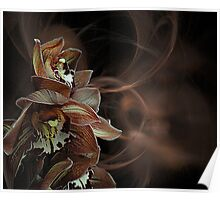Orchid Design Poster