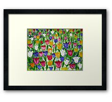 Tulips as far as you can see Framed Print