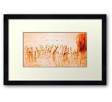 flame dance Framed Print