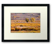 Beautiful Autumn landscape Framed Print