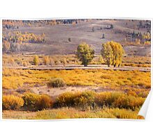 Beautiful Autumn landscape Poster