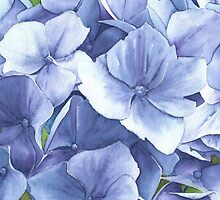 Blue Hydrangea at Bodnant Gardens - Aquamarkers. by Gee Massam