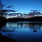 Dawn on Dog Pond by Sara Bawtinheimer