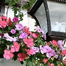 Street lamp & flowers by PhotosByHealy