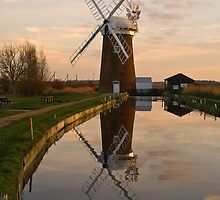 Horsey Mill by Gerry  Balding