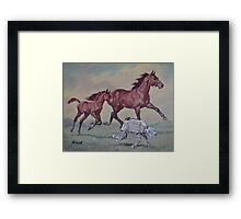 Young,Wild and Free Framed Print