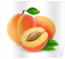 Fresh cut apricots Poster