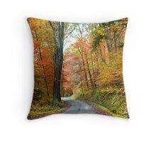 Scenic road Throw Pillow