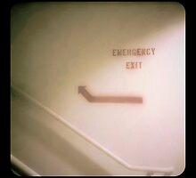 Emergency Exit by Erin  Sadler