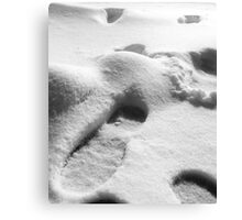 02-01-11  SNOW DAY!  SNOW DAY! Canvas Print