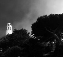 Coit Tower in the Fog by fototaker