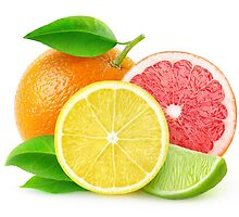 Various citrus fruits by 6hands