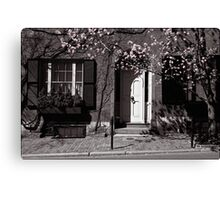 Tree in blossom, Boston, USA Canvas Print