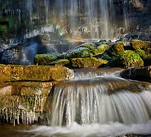 Magical Falls by Angie Latham