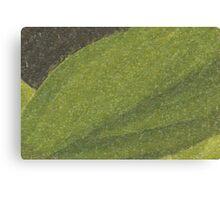 stone leaf Canvas Print