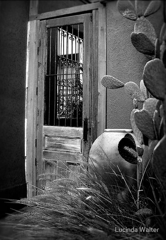 Tucson Door ~ Black & White by Lucinda Walter