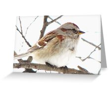 A Simple Tree Sparrow Greeting Card