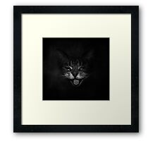 Laughing Cat Framed Print