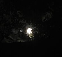 Eerie Full Moon by tmarie1