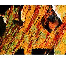 Peering Through Photographic Print