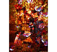 Shimmer Photographic Print