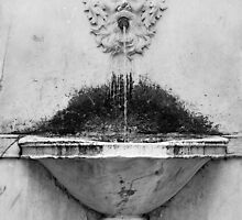 Marble fountain Lucca Italy by lynneriley