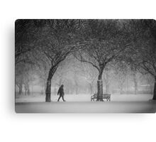 Caught in the snowstorm Canvas Print