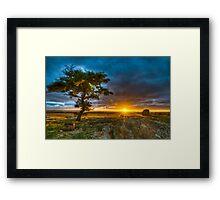 Dog Rocks At Sundown Framed Print