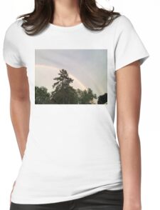 Double Rainbow Womens Fitted T-Shirt