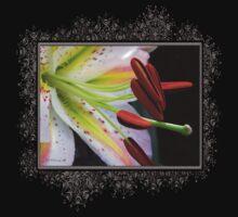 Oriental Lily Hybrid named Mojave One Piece - Short Sleeve