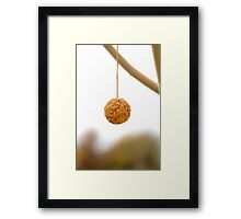 A ball Framed Print
