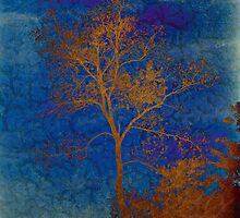 Autumn Tree by James Brotherton