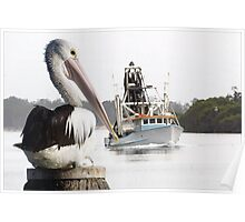 Pelican and Trawler Poster