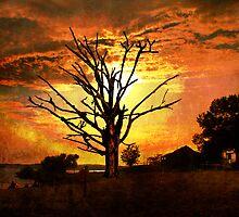 Evening's Grandeur by Sharksladie