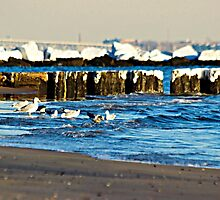 Snow On The Jetty by Funmilayo Nyree