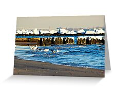 Snow On The Jetty Greeting Card