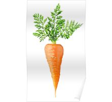 Carrot with big leaves Poster