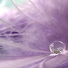 In love with feathers... and bubbles... by Mary Trebilco