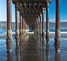 Pier Perspective by Rick Gustafson