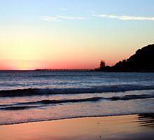 Dawn Silhouette  by Rhonda F.  Taylor