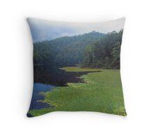 Clarrie Hall Dam  Throw Pillow