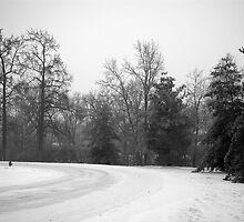 Snowy Road by Dan Morgan