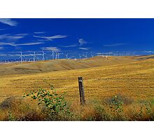 Windmills in the Hills Photographic Print