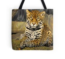 Milwaukee County Zoo Tote Bag
