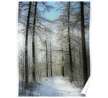 A Path in the Snow Poster