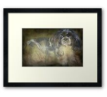 """Little Miss Chi Chi..."" Framed Print"