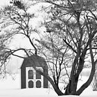 tree and barn by mltrue