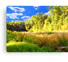 summer landscape Canvas Print